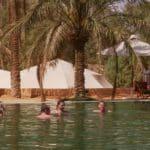 Jutta's Wüstenakademie
